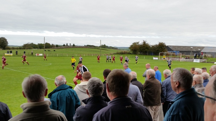 Cattle, Cemetery, Fields. Standard Junior Football Back Drop.